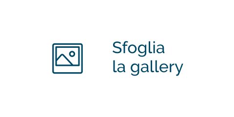 Sfoglia la Gallery